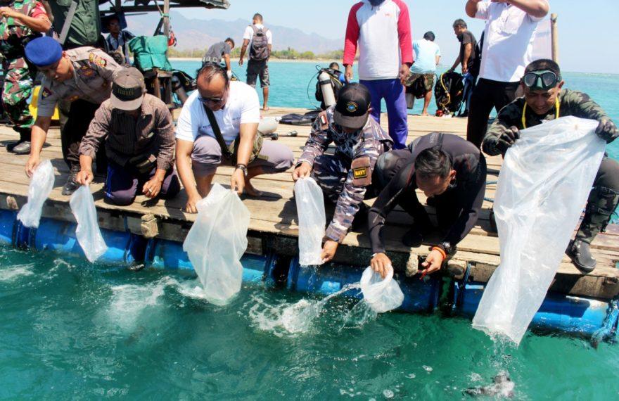 Peduli Kelestarian Laut, Tentara Bersama Pelindo III Dan Nelayan Tanam Terumbu Karang Serta Tebar Bibit Ikan/fajarbadung.com