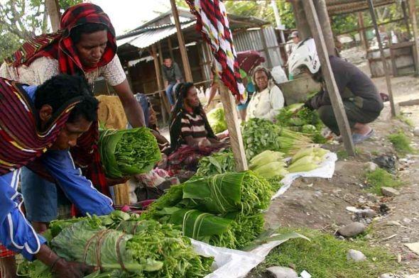 Masyarakat Pendatang Diminta Jangan Tinggalkan Papua/fajarbadung.com