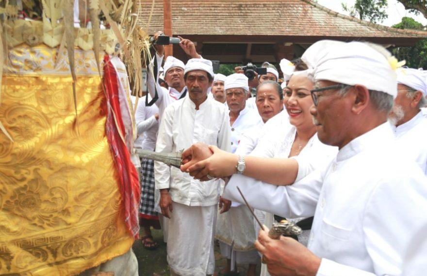 Bupati Eka 'Nuwek' Bagia Pule Kerti, Tandai Nyineb Karya Agung Pengurip Gumi/fajarbadung.com