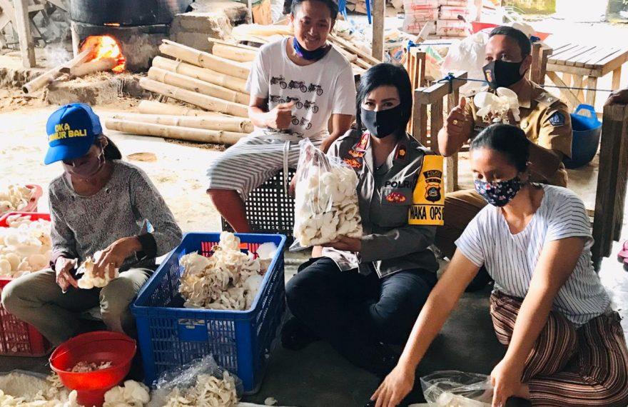 Jaga Ketahanan Pangan, Wakapolres Badung Temuai Pengusaha Jamur/fajarbaudng.com